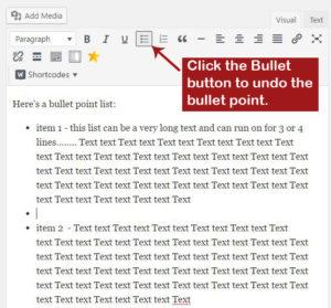 WordPress Adding Space Between Bullet Points