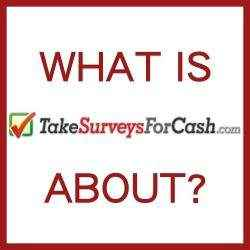 What is Take Surveys For Cash About?