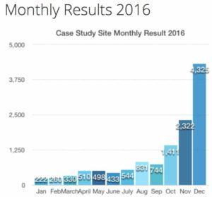 Vicky's 2016 Case Study Earnings