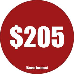 Income Reports - Mar17 - Gross Income
