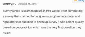 Survey Junkie Complaint