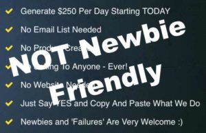 $250 Online Every Day Not Newbie Friendly