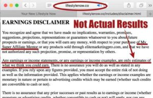 Lifestyle Now Income Disclaimer