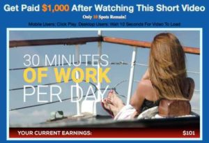 One Millionaire System 30 minutes of work a day