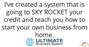 The Ultimate Business System's offer to you
