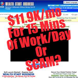 Is Wealth Start Business a scam or make $11.9K:mo for 15mins of work:day?