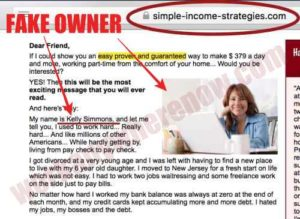 Simple Income Strategies Fake Owner