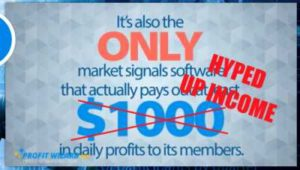 Profit Wizard Pro Hyped Up Income
