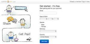 BigSpot.com has a second site called SurveySay.com