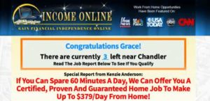 Income Online Sales Page