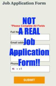 Online Flex Job Does Not Give You A Real Job Application Form