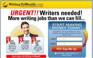 Writing To Wealth optin page