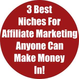 3 Best Niches For Affiliate Marketing Anyone Can Make Money In!