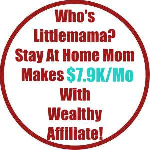 Who's Littlemama? Stay At Home Mom Makes $7.9K in Nov/18 With Wealthy Affiliate!
