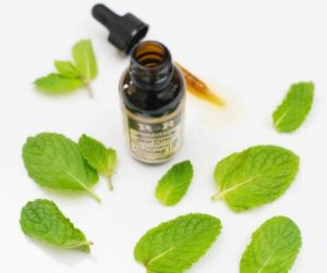 CBD oil with leaves